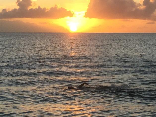 baignade au coucher du soleil