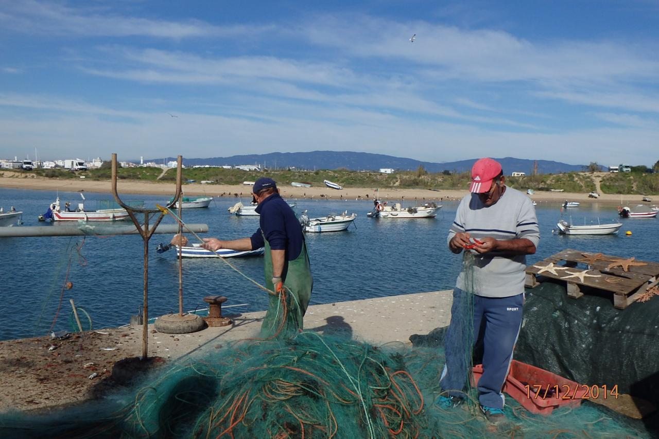 Les pêcheurs relèvent leurs filets sur le quai
