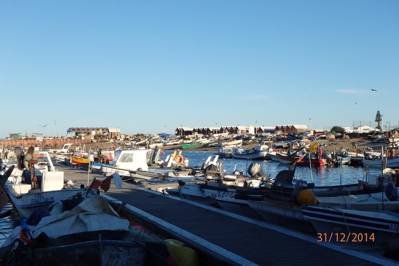 Culatra : port de pêche