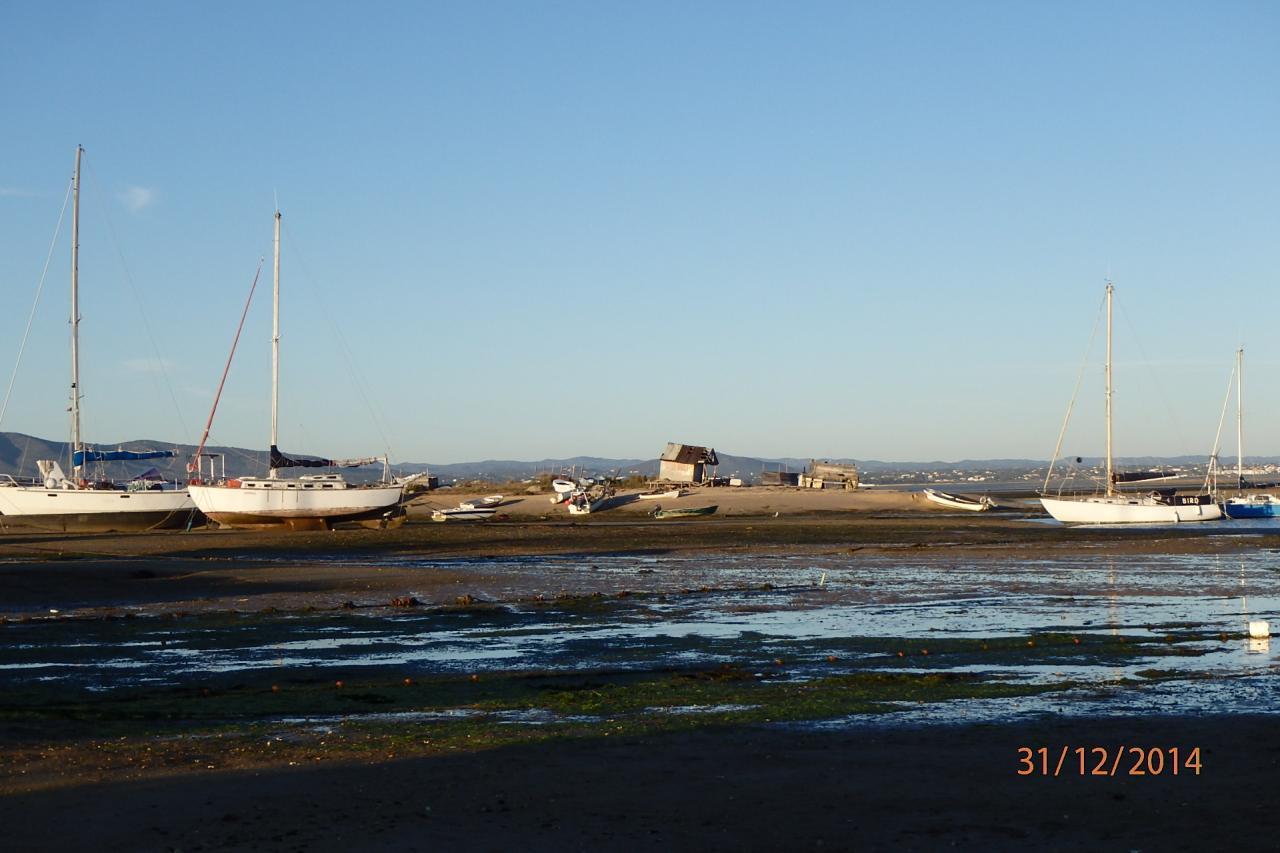 Culatra : une colonie de bateaux délabrés rivés là depuis longtemps