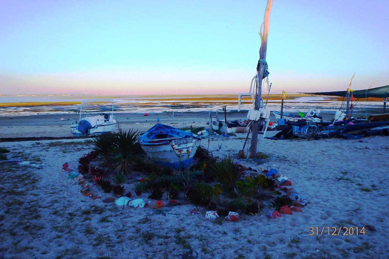 Culatra : décoration marine sur la plage
