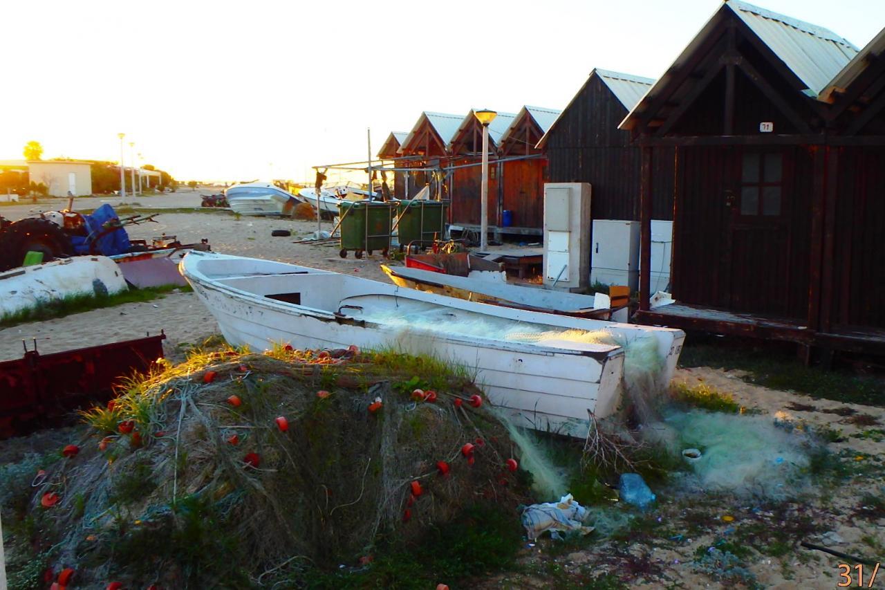 Culatra : les cabanes des pêcheurs à proximité du port
