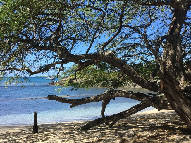 Mouillage à True Blue Bay