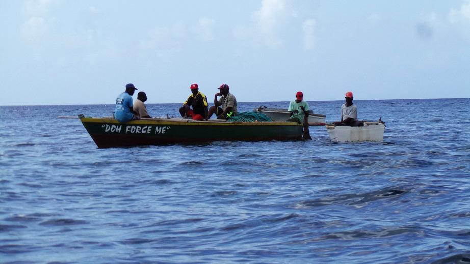 Les filets sont amenés par les pêcheurs sur leur barque