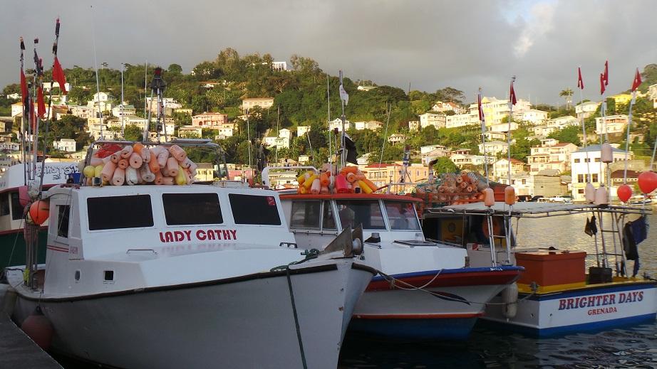 St Georges - Bateaux de pêche amarrés à Carenage