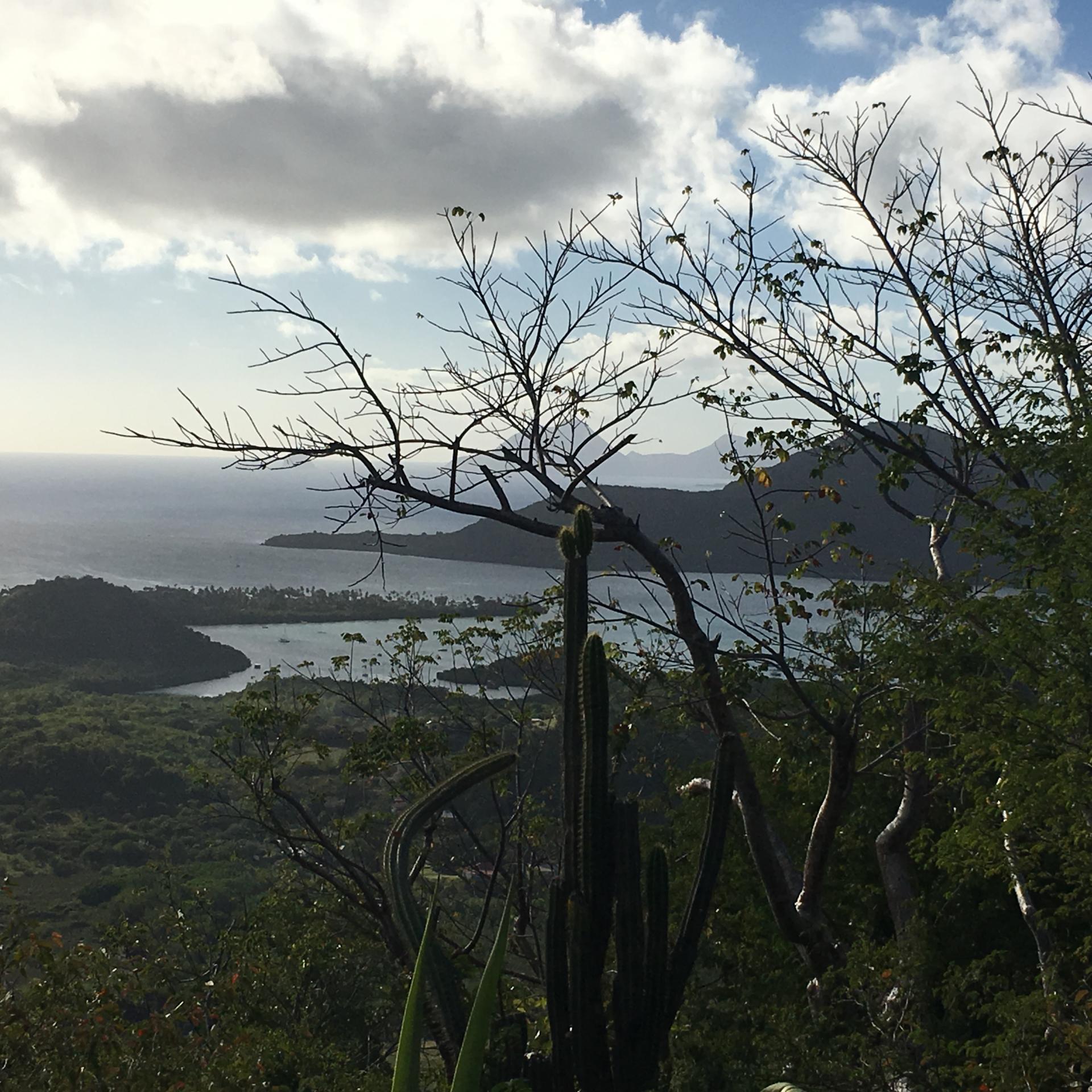 Vue sur la pointe des Figuiers depuis le mont CRève-coeur